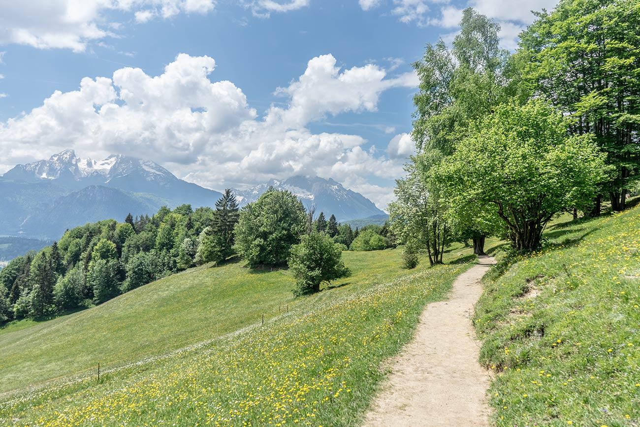 Weg 17 Richtung Kneifelspitze (c) STADTBEKANNT Zohmann
