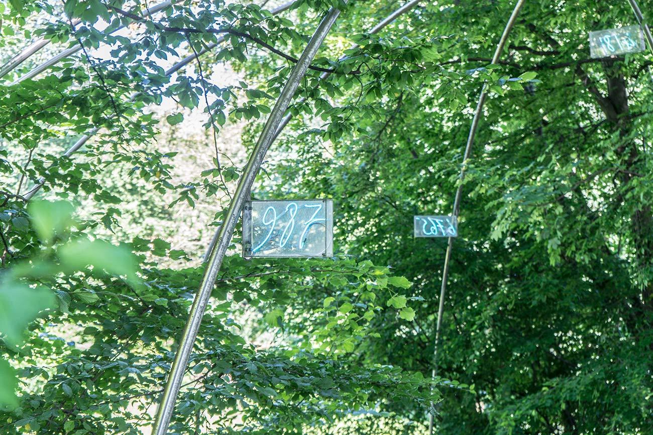 Ziffern im Wald von Mario Marz (c) STADTBEKANNT Zohmann