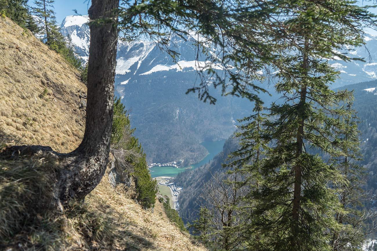 Blick auf den Königssee (c) STADTBEKANNT Zohmann