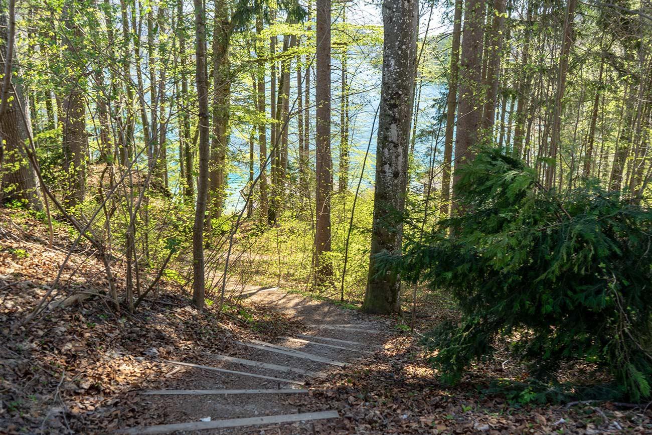 Waldweg zur Schlossfischerei Fuschl (c) STADTBEKANNT Zohmann