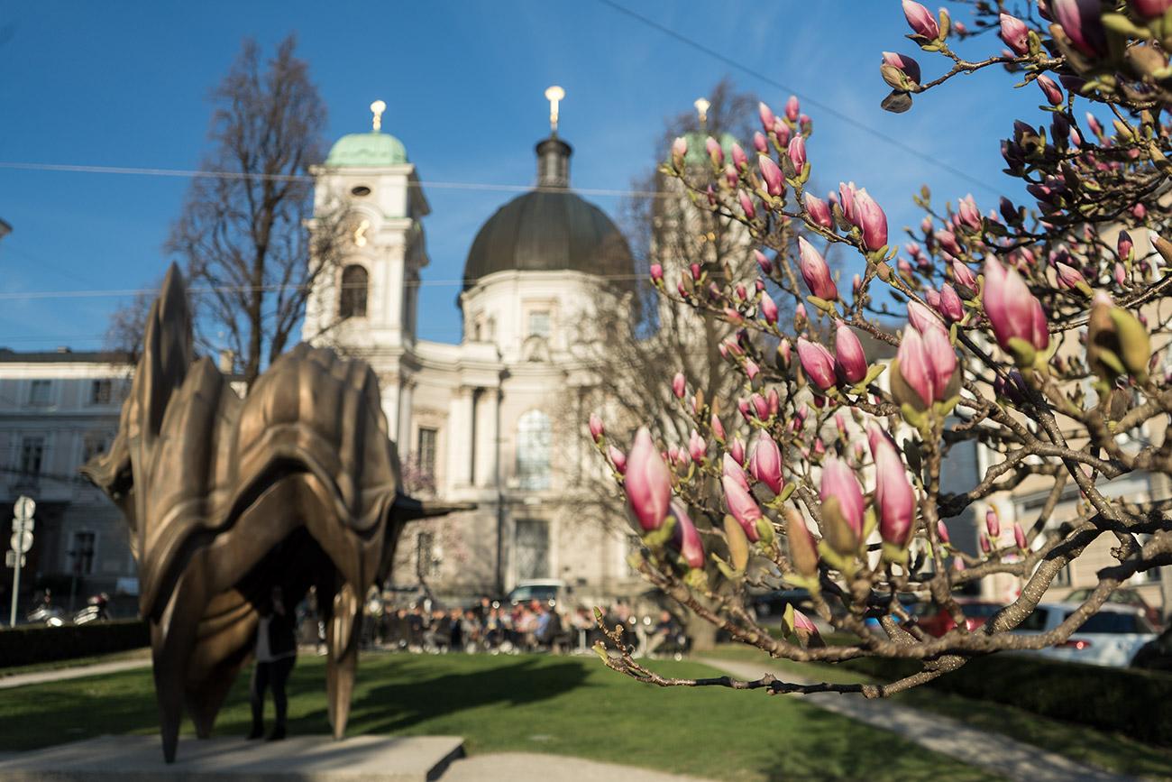 Makartplatz im Frühling (c) STADTBEKANNT Zohmann