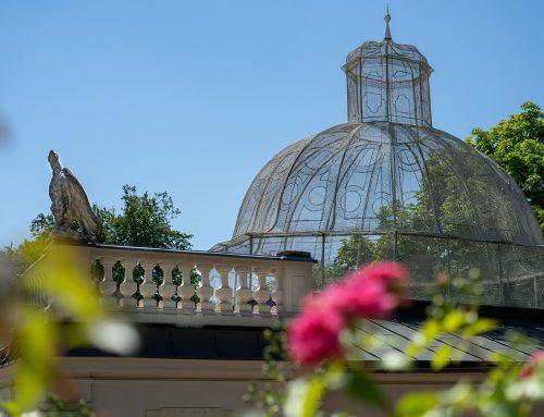 Das Vogelhaus im Mirabellgarten