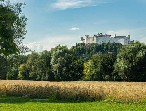 Wohin in Salzburg: 4.9. – 10.9.2020